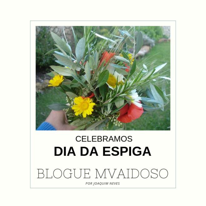 ESPIGA001.png